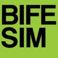 BIFE - SIM 2017 Bucharest