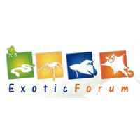 Exotic Forum Valencia 2014