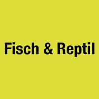 Fisch & Reptil 2021 Sindelfingen