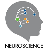 Neuroscience 2021 Chicago