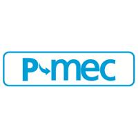 P-MEC worldwide 2021 Rho