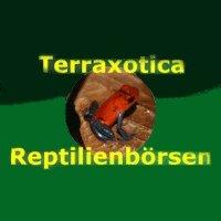 Terraxotica  Neumünster