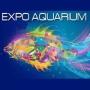 Expo Aquarium, Seville
