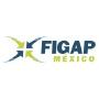 FIGAP, Guadalajara