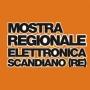 Mostra Regionale Elettronica, Scandiano