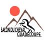 Salon du cheval Guadeloupe, Baie-Mahault